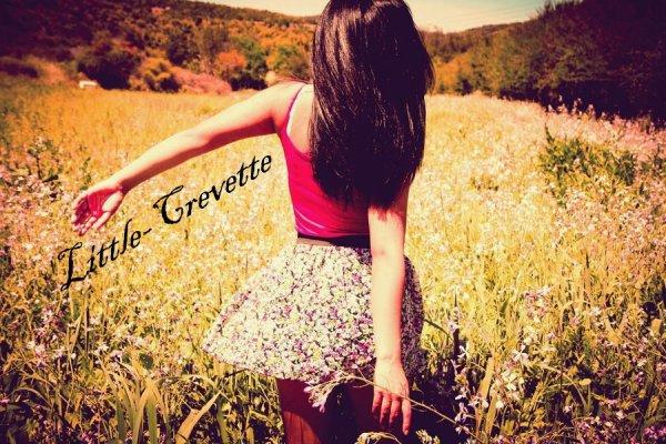 Follow Your Dreams † ∞