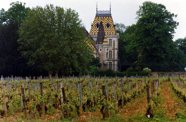 Des Vins  (10189)