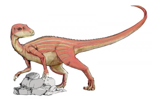 Des Dinosaures  (10287)