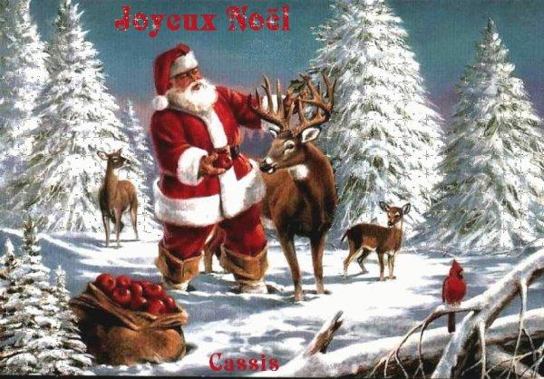 Joyeux Noël   (4931)