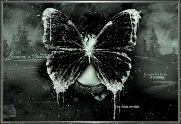Des Papillons  (10907)