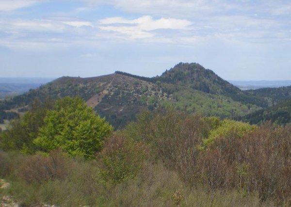 Des Volcans  (11566)