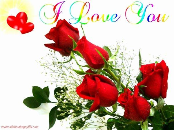 Love wallpaper - red roses