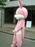 Lapin lapin rose tout le monde si mes même les chien
