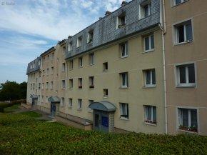 Fontenay-aux-Roses : Jean Violet (Moulin Vert)