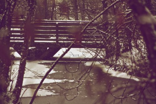 J'ai la tête qui tourne, mes yeux se dirigent vers le ciel, je vois la neige tombé, et c'est à toi que je pense.