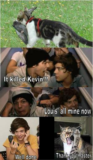 voici comment Kevin the pigeon est mort: