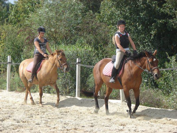 Horse-Ball au club                                                                        Mercredi 14 septembre 2011