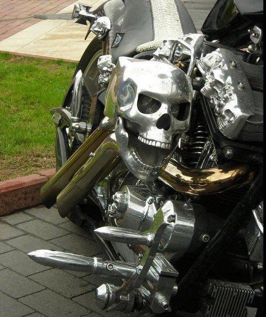 scull bike