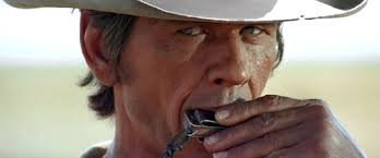 Le meilleur western