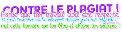 ¤ Les règles de mon blog et le sommaire ¤