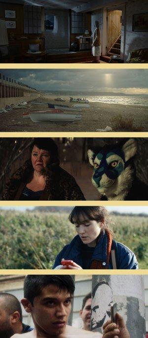 Lundi 14 mai #Cannes2018, les films