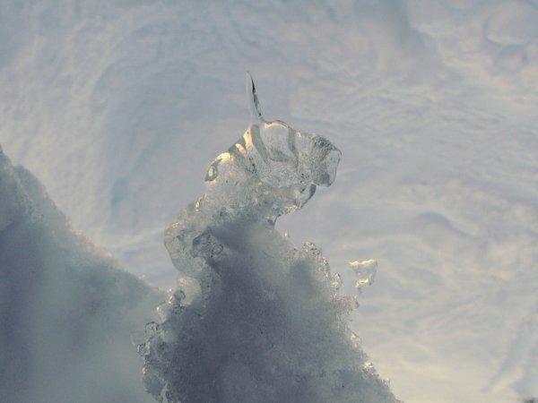 La licorne....en ce jour de Noël 2011.....