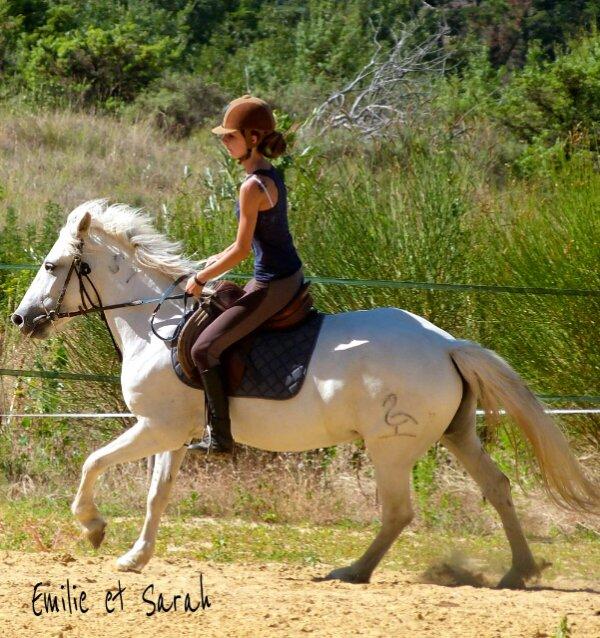 L'amour d'un cheval n 'a pas de prix