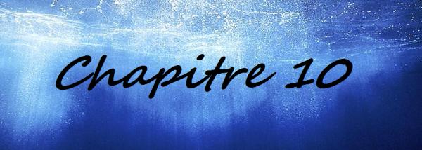 Chapitre 10