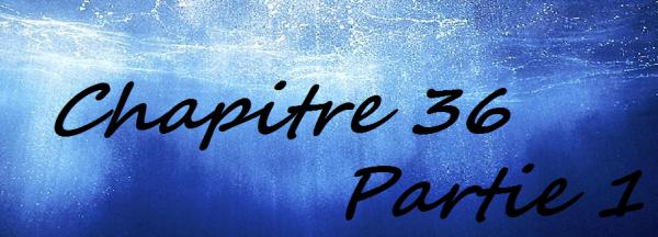 Chapitre 36 Partie 1