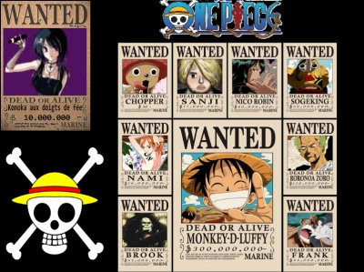 Wanted sanjinette - Affiche wanted one piece ...