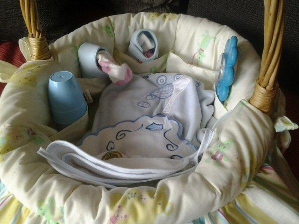 Voici un panier de toilette pour bébé
