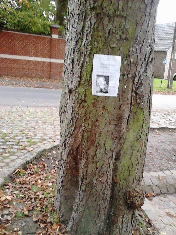 SYLVIE CARLIN Personne disparue depuis presque  23 ans