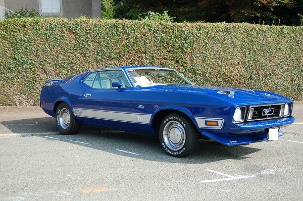 Mustang ....