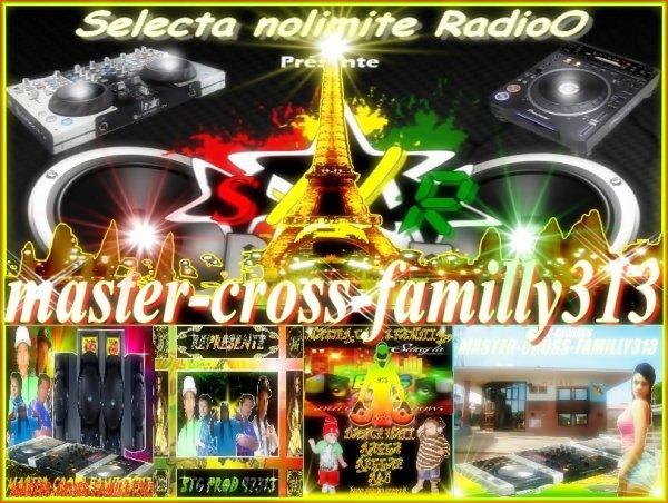 image master-cross 313
