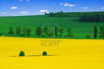 CREATOR: gd-jpeg v1.0 (using IJG JPEG v62), quality = 88