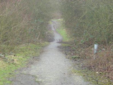 Chemin vers Cora