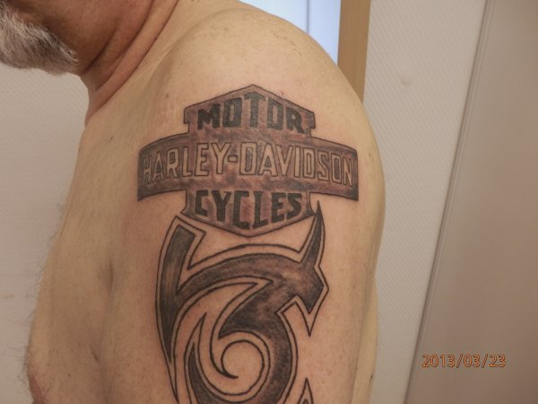 Tribal Harley Davidson - Tattoo-bresil90 - photo#47