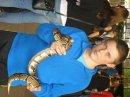 Photo de reptil59540