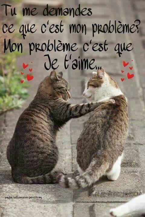 Ah l'amour....