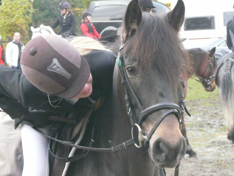 Une turie ce poney