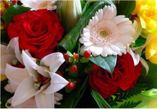 086aeb256ed fleurs pour ma femme - mangas et conneries d alger