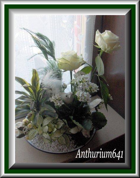 Blog de anthurium641 page 5 blog de anthurium641 art floral - Idee petit jardin fleuri brest ...