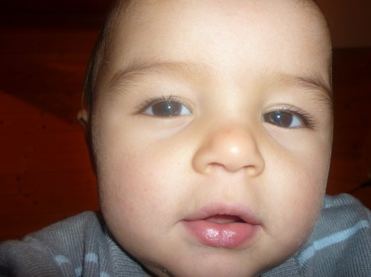 mes neveux
