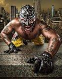 Photo de rey-mysterio-91230