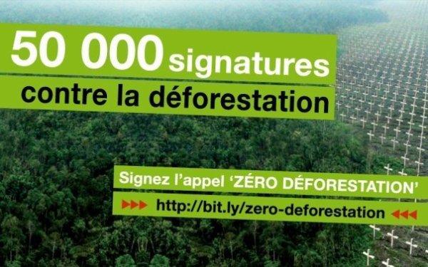 SOS Forêts... Il est temps d'agir !!