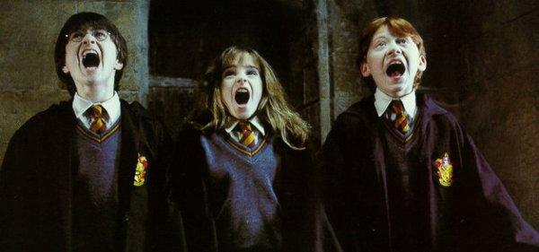 Il faut du courage pour affronter ses ennemis mais il en faut encore plus pour affronter ses amis...    Ce ne sont pas nos capacités qui déterminent ce que nous sommes, Harry, ce sont nos choix !