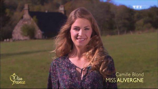 Election de Miss Auvergne 2014