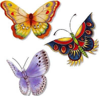 les papillon de la liberter