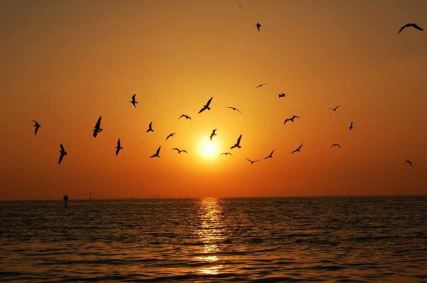 couchers de soleil à Sidi Rabat