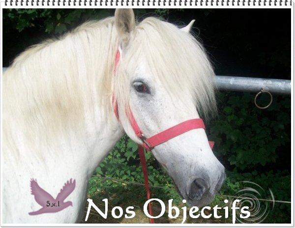 _Objectifs_