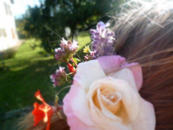 Mlle Flowers êtes-vous bien dans ce nouveaux substrat?