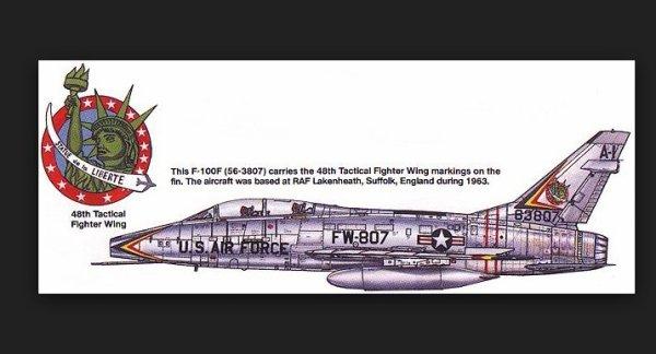 1950's 48th Fighter Bomber wing '' Statue de la liberté'' patch Skyblazers