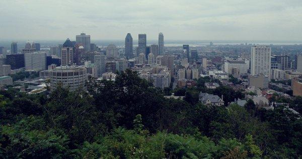 . Montréal juillet 2013.  .