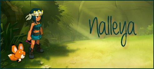 Nalleya, Evolution, avancement ... ♥