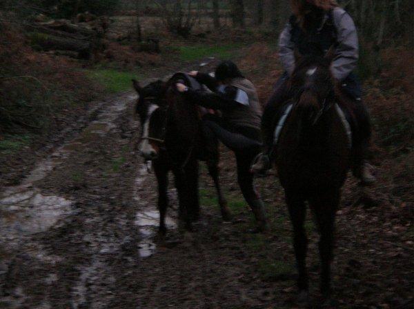 Mercredi 02 janvier 2012 - Une Balade qui a de la griffe !