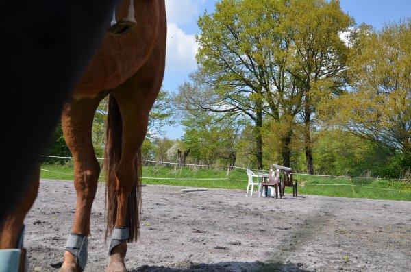 Vendredi 03 mai 2013 - du saut, mais de la technique aussi ! :)