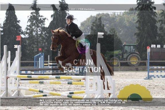 Lundi 11 novembre 2013 & dimanche 17 novembre 2013 - saut & concours à Betton