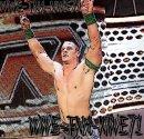 Photo de WWE-TNA-NWE71