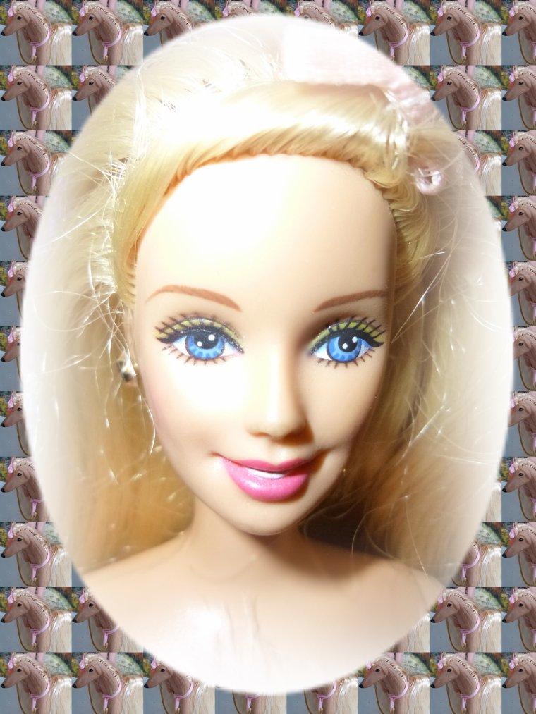 Barbie ses amies et les chiens blog de barbiecathdolls - Image de violetta et ses amies ...